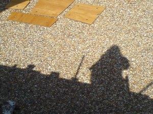varnished floor panels